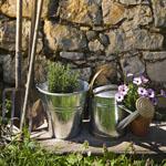 Zalety przebywania na działce i w ogrodzie