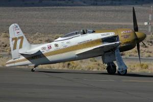 F8F-2_Rare_Bear